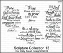 Scripture_Collection_13_G543.jpg