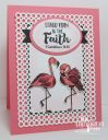Flamingo_Faith_1.JPG